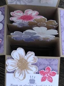 Card in a box-4