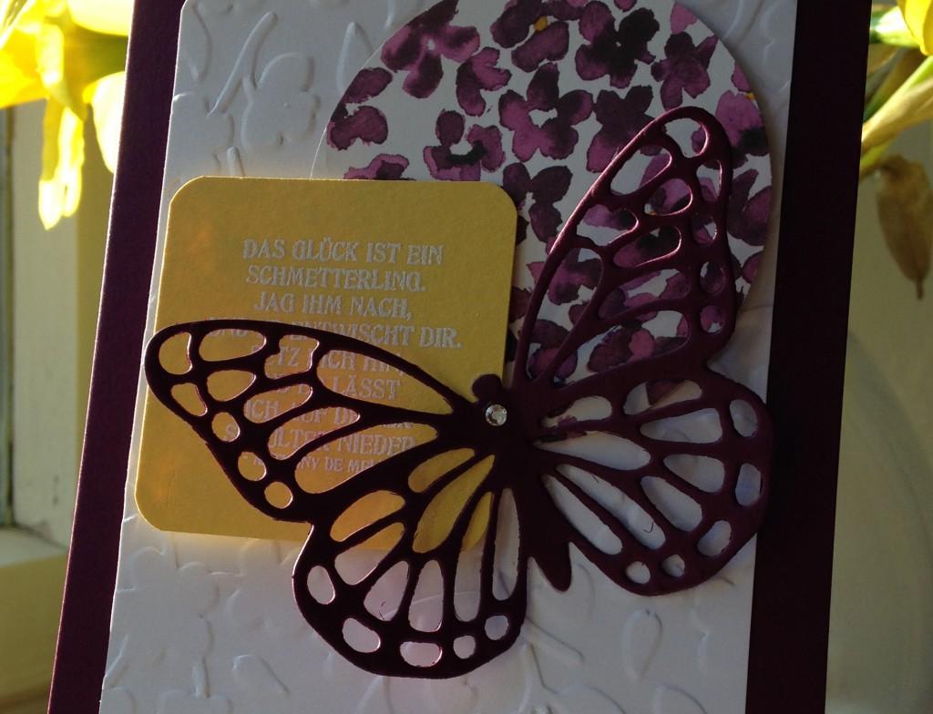 Schmetterlingsgruß_3