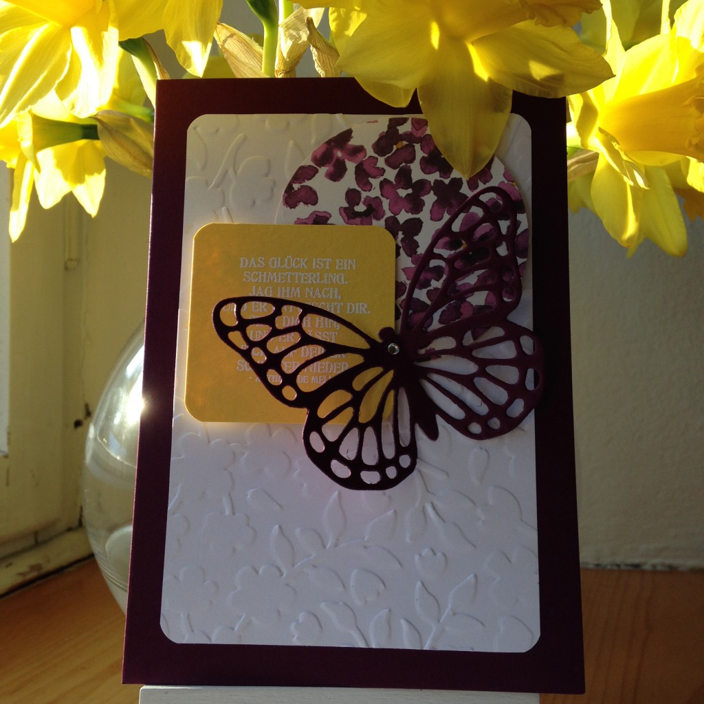 Schmetterlingsgruß_4